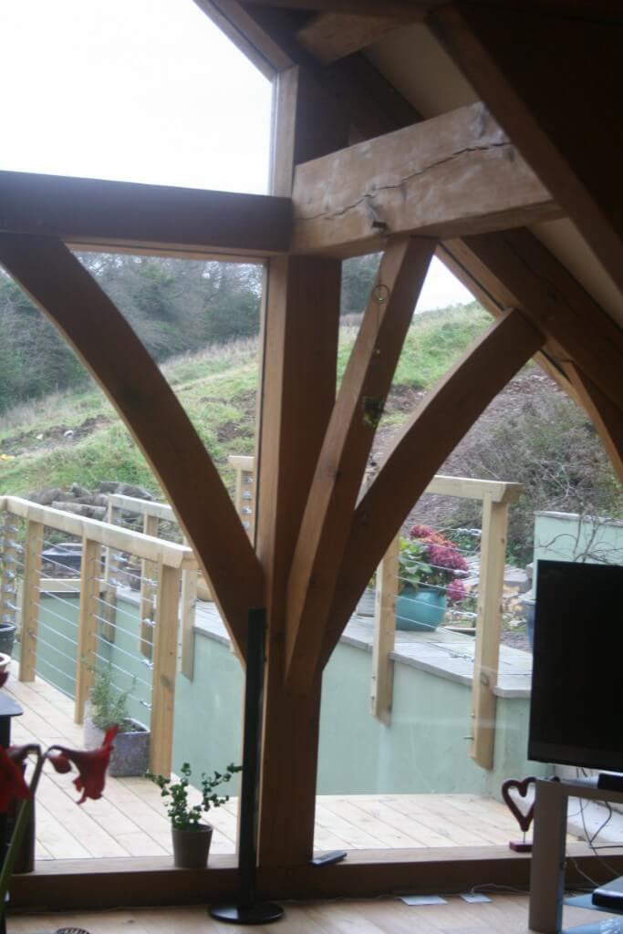 Tree tops, new build near Arbroath (8)